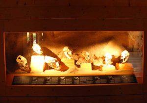 Musée de l'Ours Entremont-le-Vieux